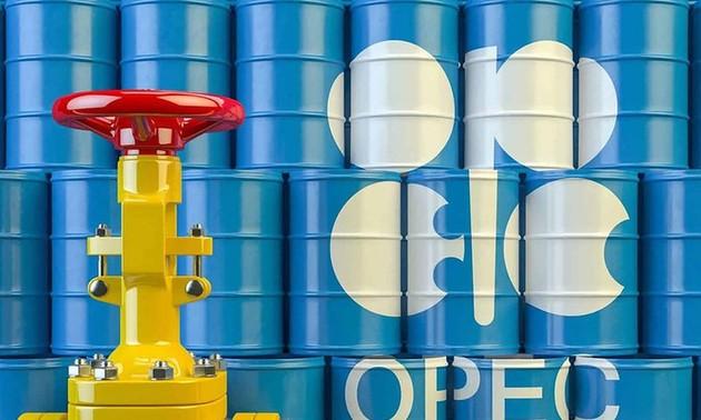 Сокращение ОПЕК+ добычи нефти способствует стабилизации мирового нефтяного рынка