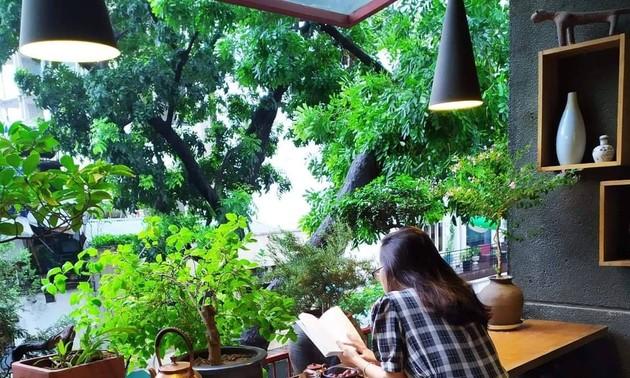 Чайный дом популяризирует изысканность вьетнамского чая