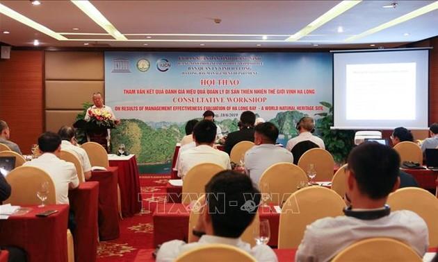 Perlu menetapkan perbatasan, memperluas dan membela dengan baik kawasan bantalan Teluk Ha Long