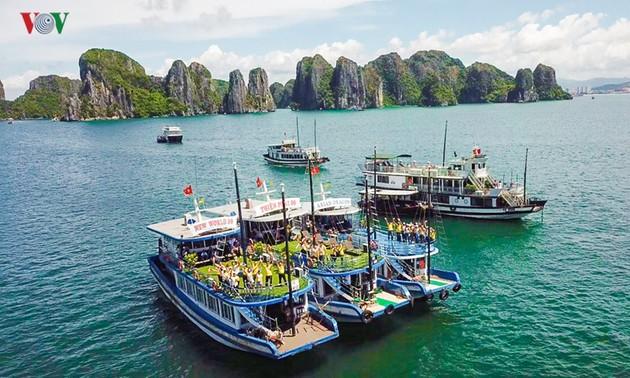 """Para kontestan peserta Kontes: """"Suara Nyanyian ASEAN+3"""" menghayati keindahan Teluk Ha Long"""