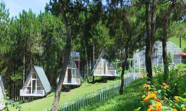 Pu Nhi Farm – Tempat wisata primitif dan penuh tertarik di jalan Tay Bac