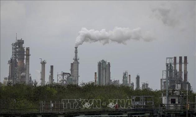 Negara-Negara OPEC Tidak Mencapai Kesepakatan tentang Hasil Produksi Minyak Tambang dalam Sidang Awal Bulan