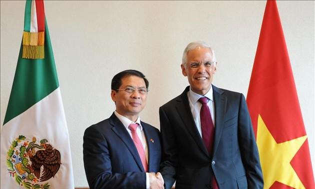 Vietnam-Mexique : 5e consultation politique