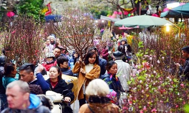 Hanoi's flower markets vibrant ahead of Tet