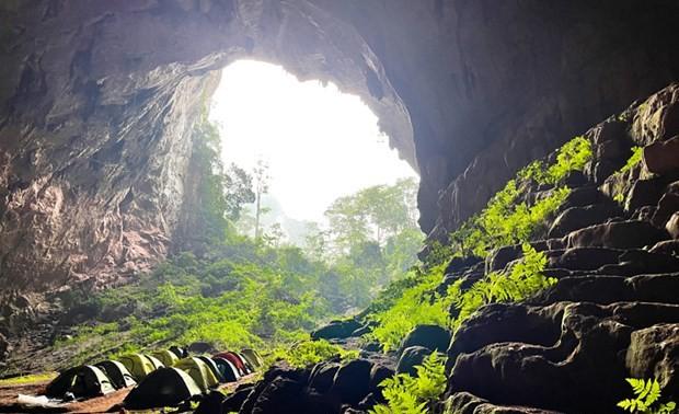 Photo contest launched to mark Phong Nha-Ke Bang National Park's 20th anniversary