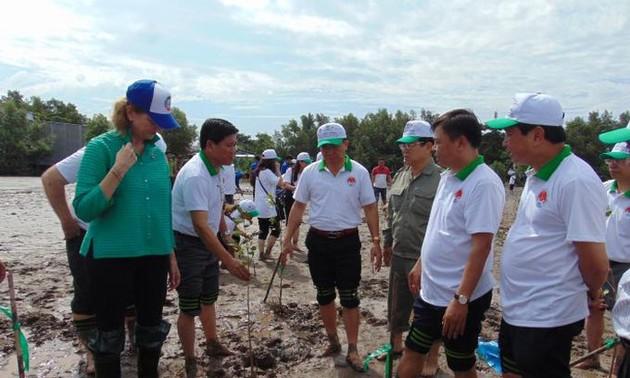 Mencanangkan gerakan reboasasi dan melindungi pantai di Provinsi Ca Mau