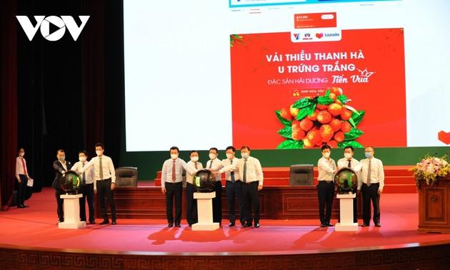베트남 농산품, 전자 상거래 이점 활용