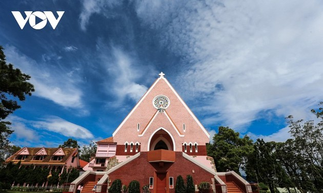 在大叻美丽的粉红色教堂打卡