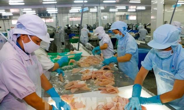 海外越南企业为越南商品进入欧洲市场搭建桥梁