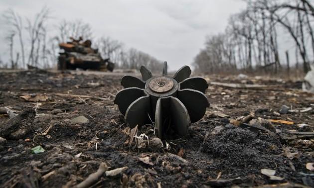 Ukraine's crisis continues