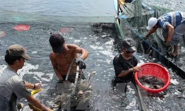 Aquatic product exports expected to grow 8 percent