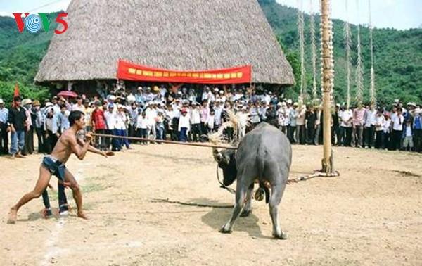 The Ma's buffalo sacrifice ritual dedicated to Jade Emperor