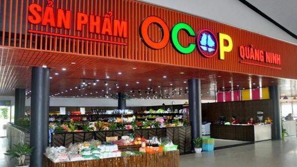 "10-year ""Vietnamese people prioritize Vietnamese goods"" campaign reviewed"