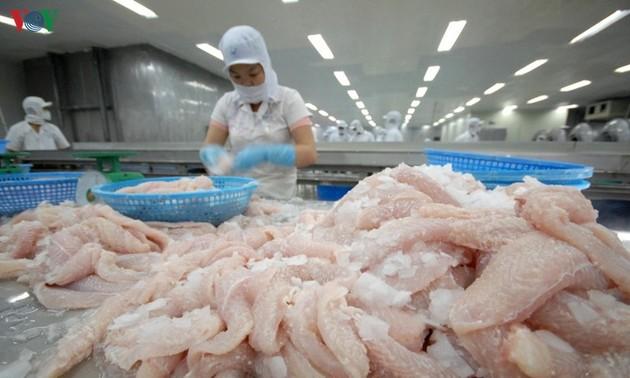 Catfish exports to UK remain high despite COVID-19 pandemic