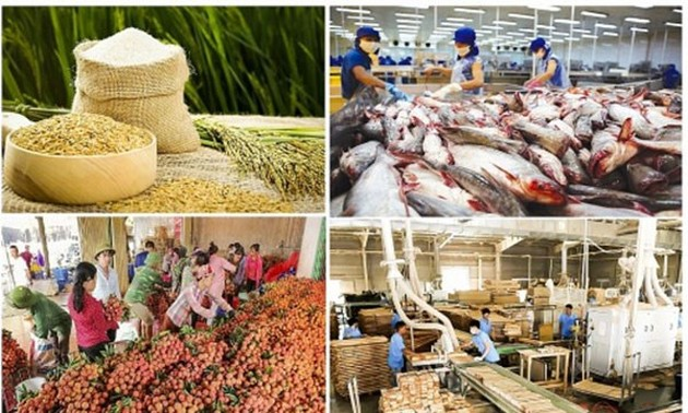 Vietnam's agricultural exports set high growth target despite difficulties
