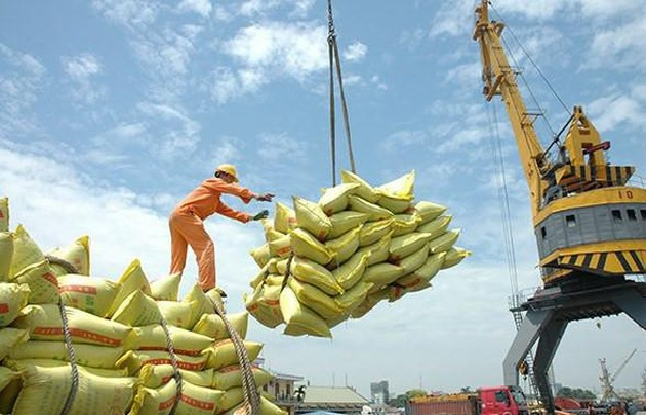 Vietnam asserts its rice brand in demanding import markets