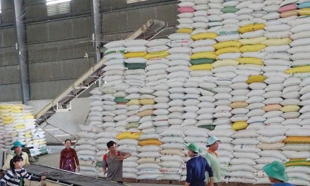 L'exportation du riz vietnamien en 2020