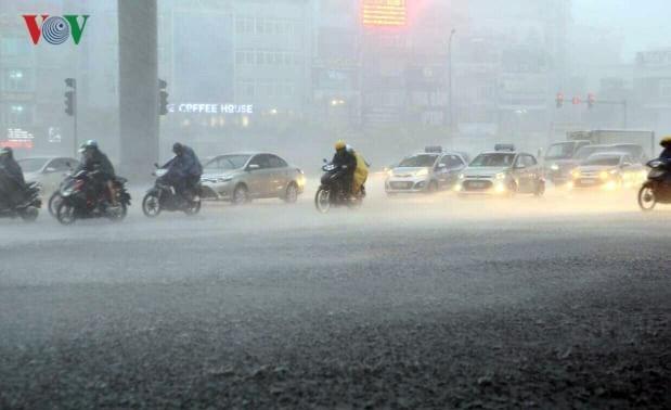 Cette année, au Vietnam, la pluie est-elle suffisante?