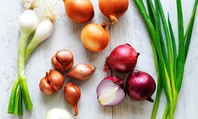 L'oignon, la ciboule et l'échalote et leur utilisation dans la cuisine vietnamienne