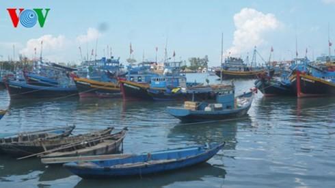 Provinsi Binh Thuan membantu kaum nelayan mengarungi dan merapati laut