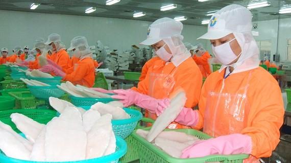 Vietnam planea ingresar más de 2 mil millones de dólares de exportaciones de pescado Tra en 2019