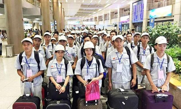 Aumenta número de trabajadores vietnamitas en ultramar en 2019