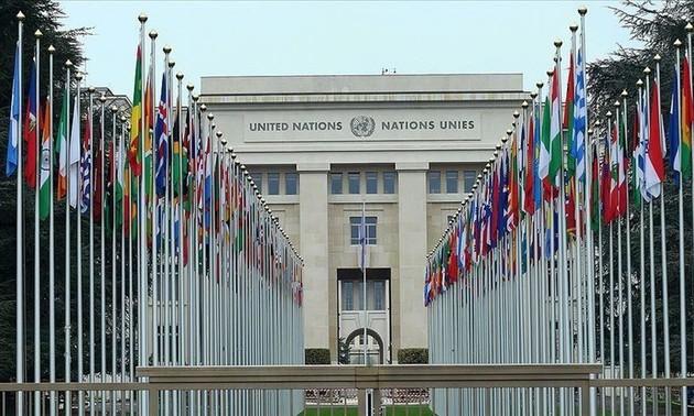 Consejo de Seguridad exhorta a Israel y Palestina reanudar negociaciones de paz