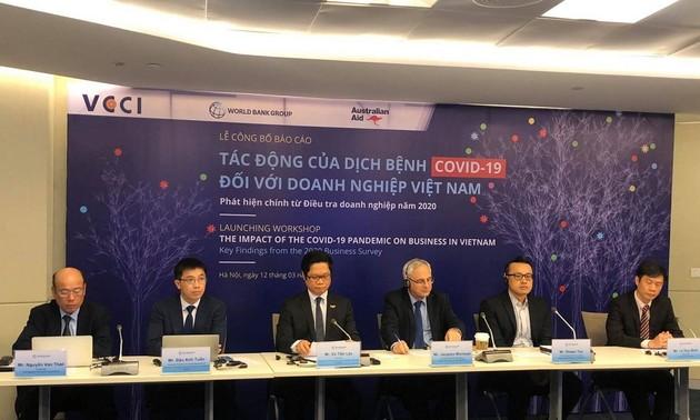 Publican el Informe sobre el impacto del covid-19 en el sector empresarial de Vietnam en 2020