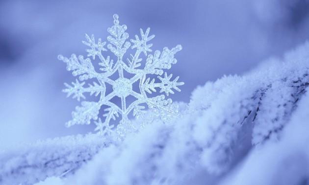 雪にちなんだ曲