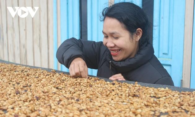 アラビカコーヒーでスタートアップに成功したクホー族の女性