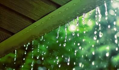 雨をテーマにした曲