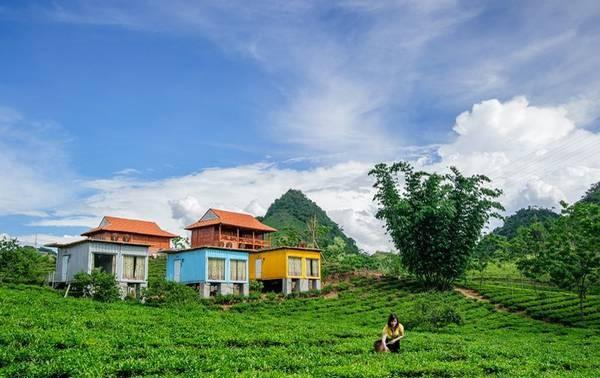 Wisata homestay: Destinasi  yang menarik di Kabupaten Moc Chau