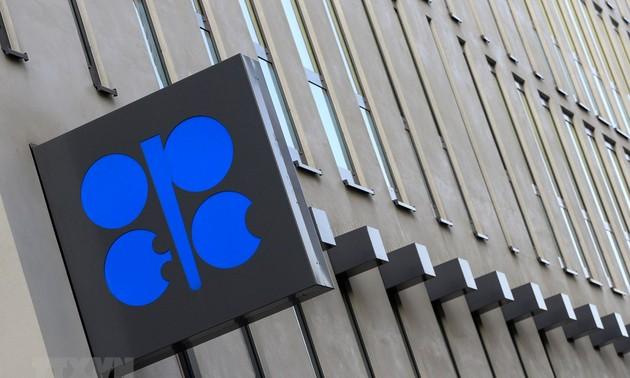 L'Opep croit toujours à l'avenir de la demande pétrolière