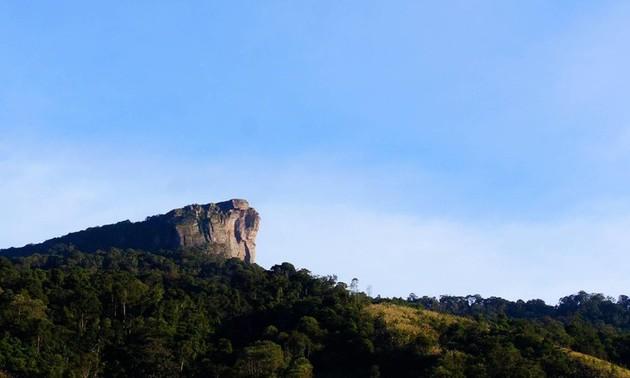 北部ソンラ省のモクチャウ国家観光地