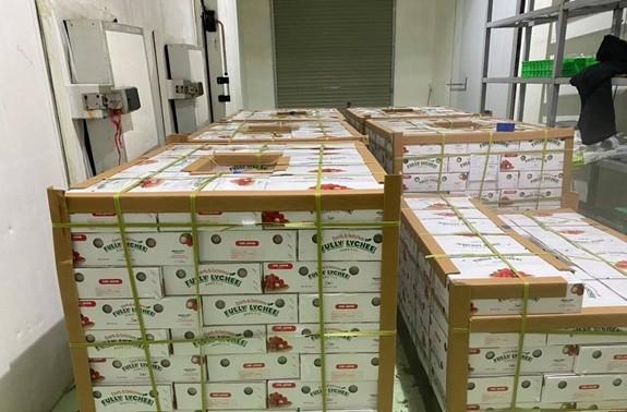 農産物の消費・輸出を促進