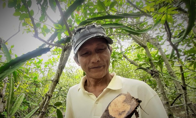 用海榄雌生产筷子和勺子 为地方经济发展开辟新路