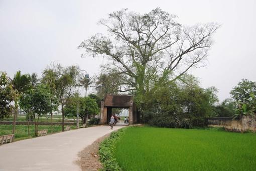 唐林古村举行被列入国家级遗迹名录15周年纪念活动