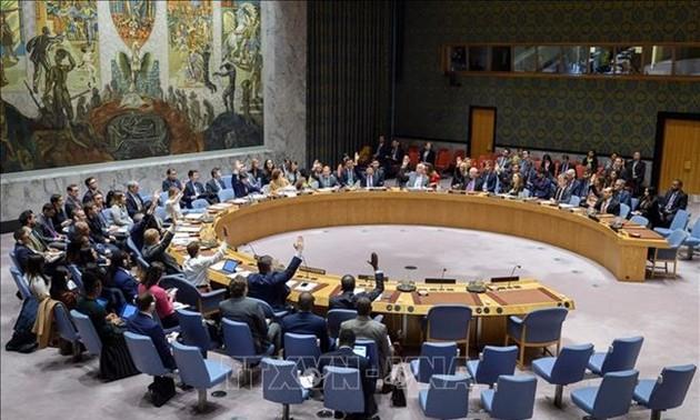 越南为联合国安理会工作做出有效的贡献