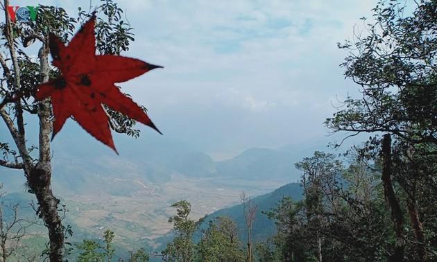 Mù Cang Chai, un havre de paix hivernal