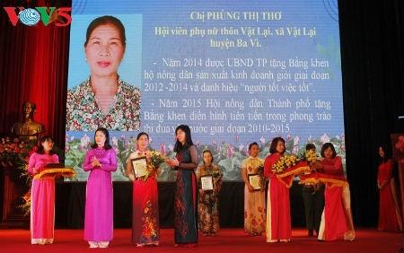 Phung Thi Tho wandelt einen kargen Hügel in einen effizienten landwirtschaftlichen Betrieb um