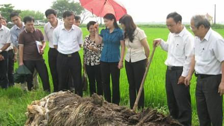 Doktor Lê Văn Tri – Wissenschaftler für die Bauern