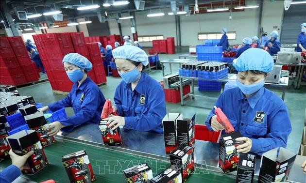 EVFTA und Potentiale vietnamesischer Unternehmen