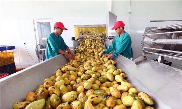 Memperkenalkan kesempatan investasi dan bisnis di daerah Trung Bo Selatan dan daerah Tay Nguyen