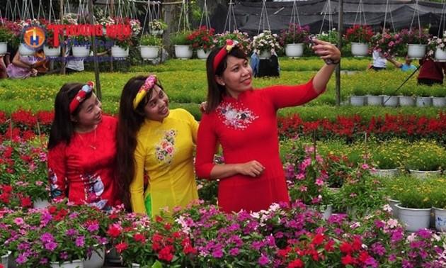 В городе Каолань провинции Донгтхап открылась улица весенних цветов