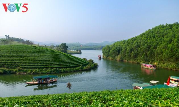 Чайный остров Тханьчыонг