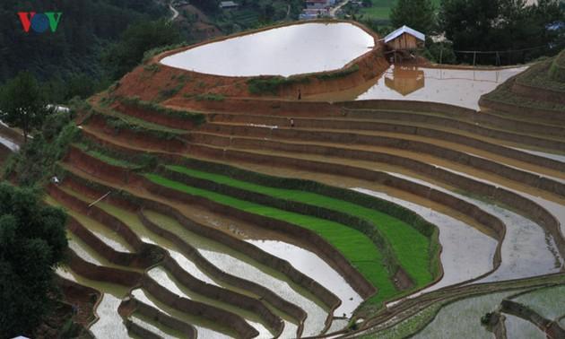Мукангчай - один из самых красивых мест на планете