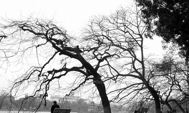 Старинный Ханой на фотографиях Ле Битя