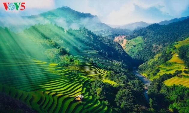Рисовые террасы Му Кан Чай – ведущее туристическое направление мира в 2020 году