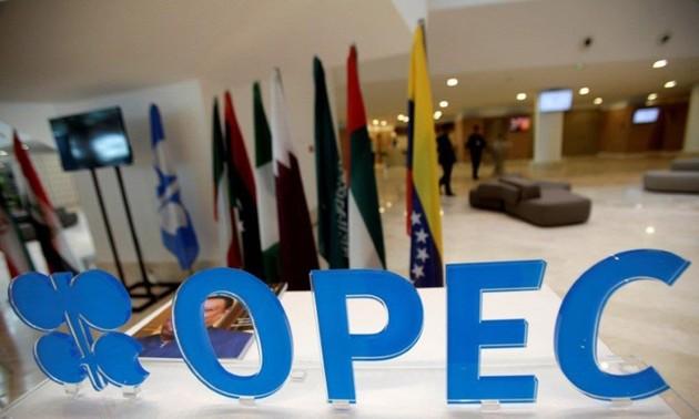 Участники ОПЕК+ смогут сократить добычу нефти, если на это пойдут и США