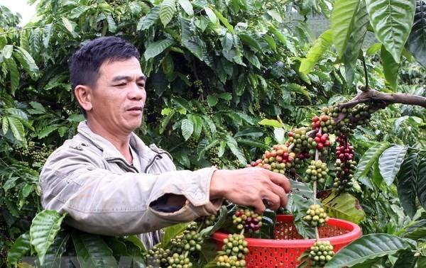 """Sắp ra mắt cuốn """"Chỉ dẫn địa lý – Di sản thiên nhiên và văn hóa Việt"""""""
